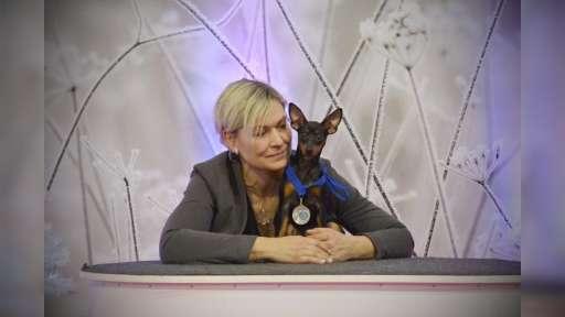 Basset hound a trpasličí pinč Caltha - caltha