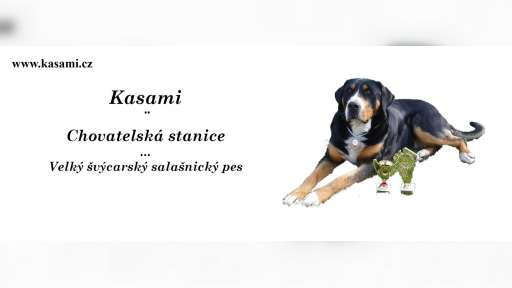 CHS Kasami - kasami