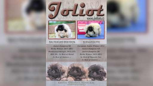 Joliot - chovatelská stanice pekingských palácových psíků - Joliot